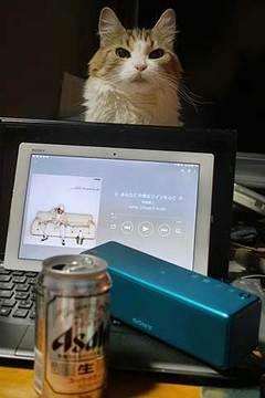 170916沢田研二で飲み明かそう.jpg