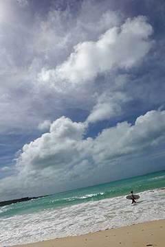180622台風一過b.jpg