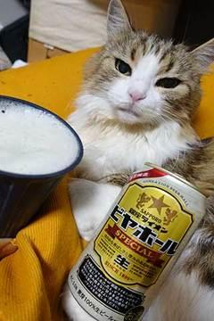 181227ライオンビール.jpg
