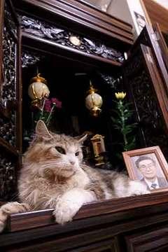 200919彼岸.jpg